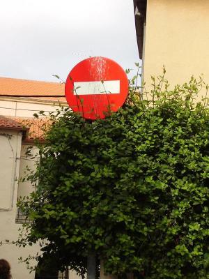 20070403225739-prohibido.jpg