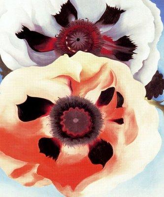 20101005223514-1950-poppies-georgia.jpg