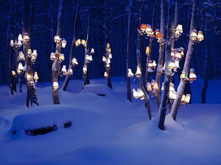 20120210132409-001-guneriussen.jpg